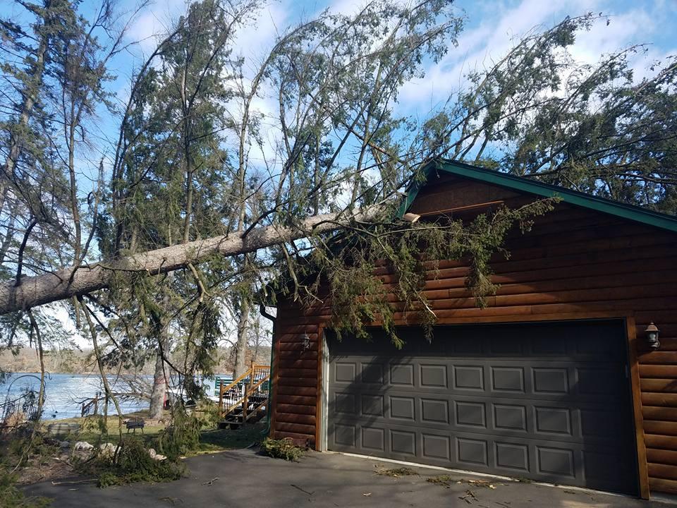 Storm causes Pine tree to fall, damaging garage